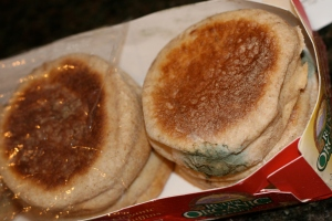 Moldy muffins